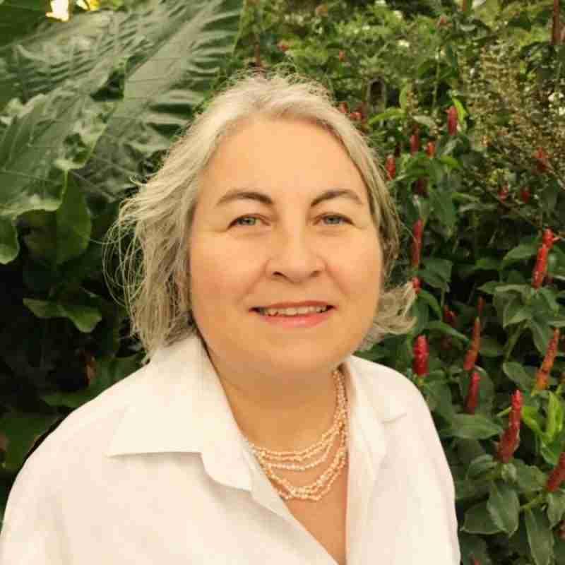 Dr Elefant-Yanni Clinical Psychologist Psychotherapist